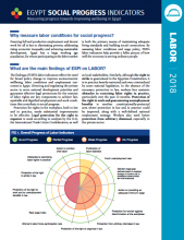 Egypt Social Progress Indicators Labor